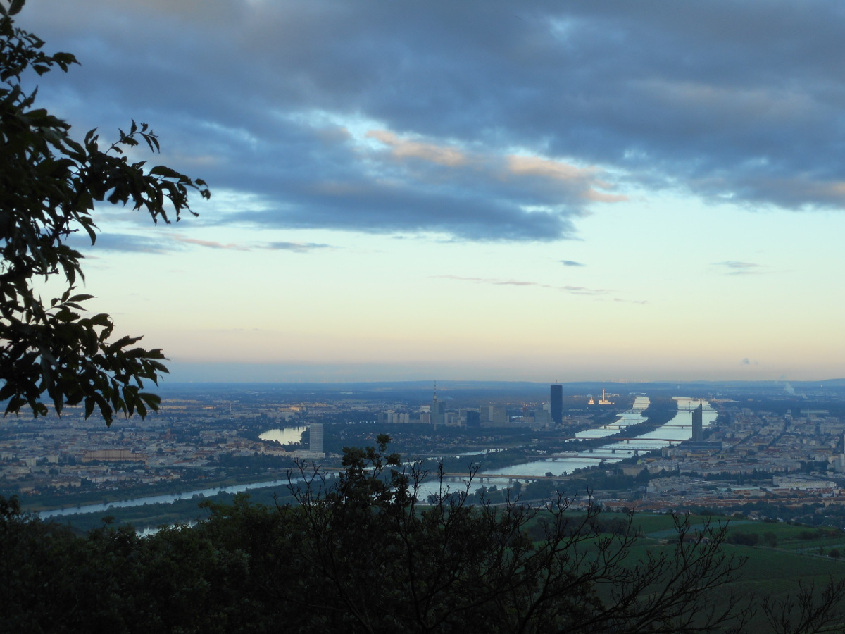 A close-up view of the Danube flowing through the city.