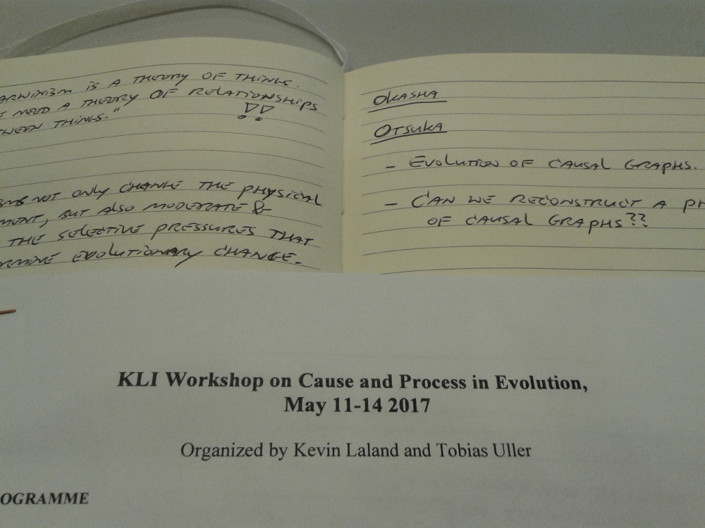 The KLI workshop on Cause and Process in Evolution.